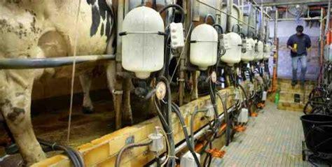 revalorisation du prix du lait un engagement fort du