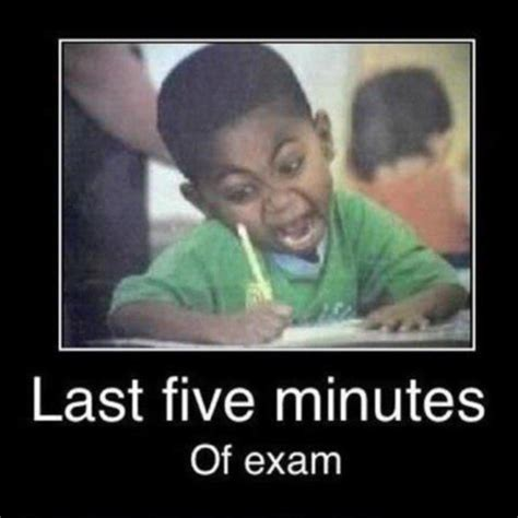 College Test Meme - 20 best college memes images on pinterest disney cruise plan college memes and disney puns
