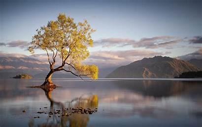 Reflection Water Trees Tree Mountain Lake Sunrise