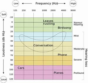 Vocal Frequency Range Chart Sensory Systems Computer Models Speech Perception