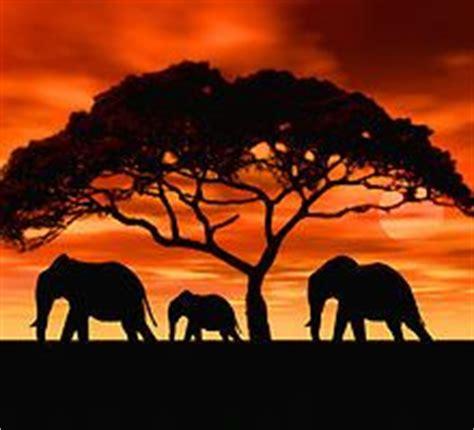elephant silhouette sunset painting elephant painting sunset silhouette acacia tree
