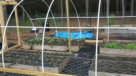 You can even automate the watering like us on facebook to be the first that gets our latest updates and submit pictures with your diy projects. DIY PVC Greenhouse/Poly Tunnel Greenhouse Project (first ...