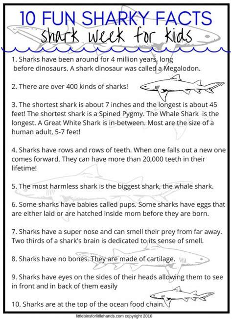 shark week activities  stem projects  kids