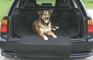 Protection Chien Voiture : housse de protection chien coffre de voiture ~ Dallasstarsshop.com Idées de Décoration