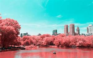 Wallpaper Central Park  Infrared  Lake  Manhattan  New York City  4k  World   9260