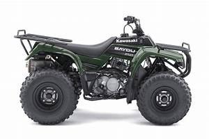 2011 Kawasaki Bayou 250
