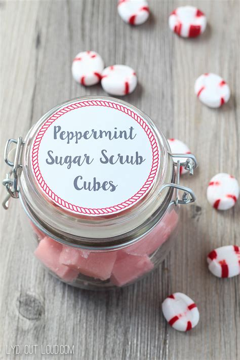 peppermint sugar scrub cubes recipe lydi  loud