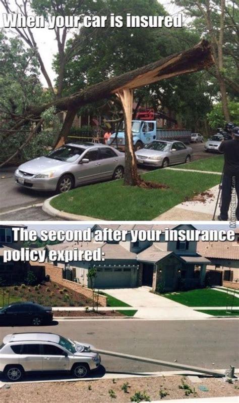 hilarious car insurance memes   set