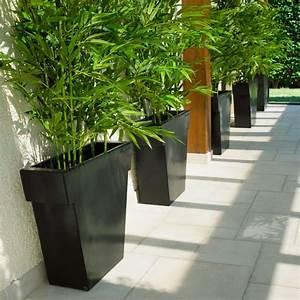 Tres Grand Pot De Fleur Exterieur : pot ext rieur vaso black 75 cm la boutique desjoyaux ~ Dailycaller-alerts.com Idées de Décoration