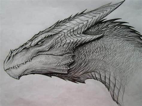 dragon sketch by tatianamakeeva on deviantart