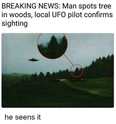 Ufo Meme - breaking news man spots tree in woods local ufo pilot confirms sighting funny meme on me me