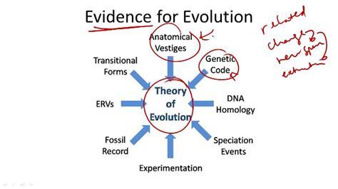 Evolution Evidence Video Biology Ck 12 Foundation