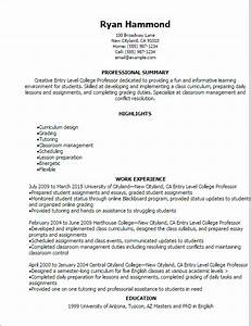 1 entry level college professor resume templates try for College level resume