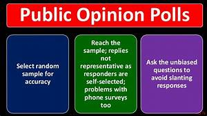 Rey Ty, Public Opinion, Political Science, Roskin, chapter 8