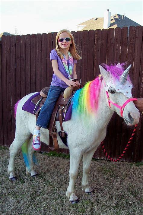 unicorn unicorns rainbow horse pet mom cute she brooke baby unicornios reales pony party birthday wanted aren they diy shawn