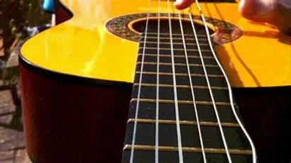Guitar Giphy Gifs Shutter
