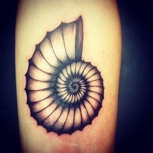 Fibonacci Nautilus Spiral Swag @littlefishstudios # ...