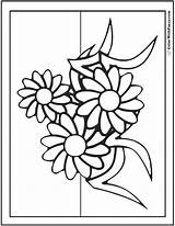 Coloring Daisies Daisy Pages Three Colorwithfuzzy sketch template