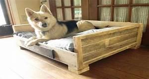 Fabriquer Un Canapé En Palette : lits pour chien en palette bois r aliser soi m me ~ Voncanada.com Idées de Décoration