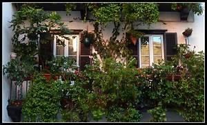 Plantes Et Fleurs Pour Balcon : un balcon avec des fleurs de belles couleurs et du ~ Premium-room.com Idées de Décoration