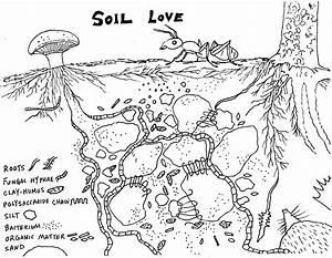 Soil Drawing At Getdrawings