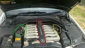 600sel M120 V12 Wiring Harness