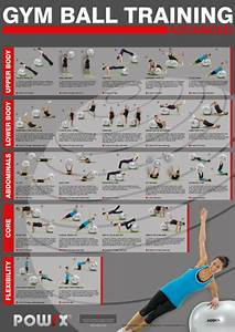 Total Body Exercise Chart A Total Body Gym Ball Exercise Chart 20 Challenging