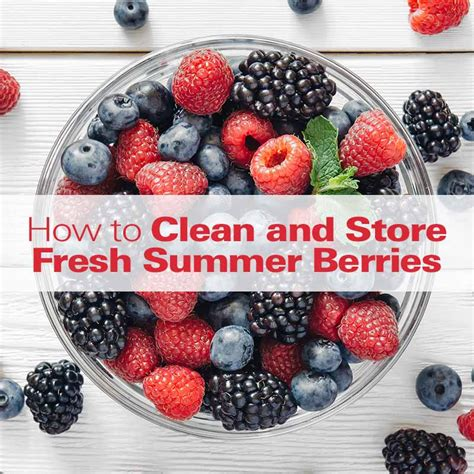 how to wash blueberries how to clean store fresh berries hamiltonbeach com