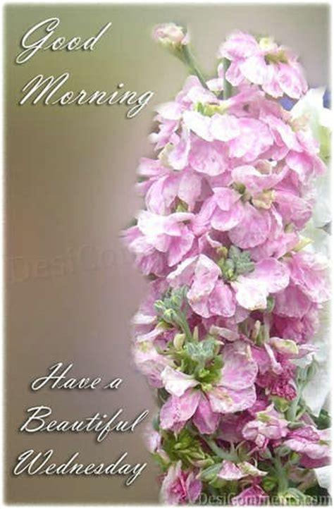good morning   beautiful wednesday wednesday