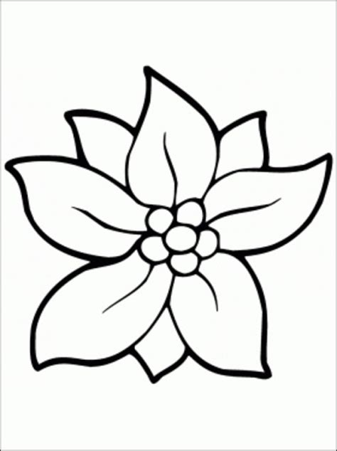 outline pictures of flowers for colouring flowers coloring pages bestofcoloring