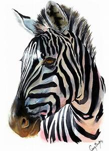 Zebra by xbrightwingx on DeviantArt