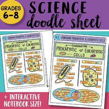 doodle sheet comparing prokaryotic  eukaryotic cells