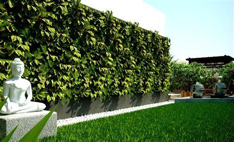 zen garden  evergreen foliage terrace garden
