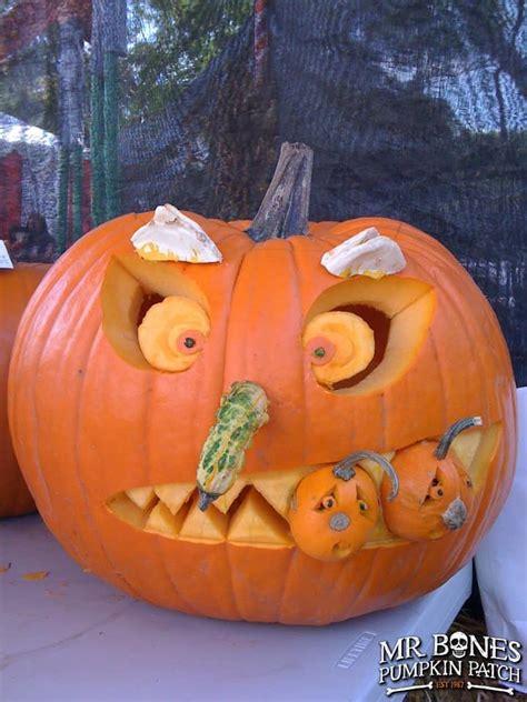carving  bones pumpkin patch