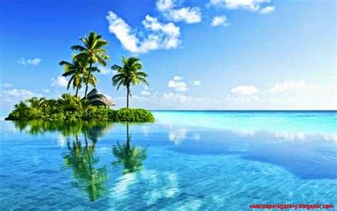 tropical island paradise wallpaper wallpapers gallery