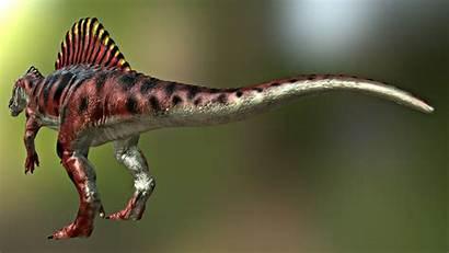 Spinosaurus 3d 3ds Max Tga Fbx Obj