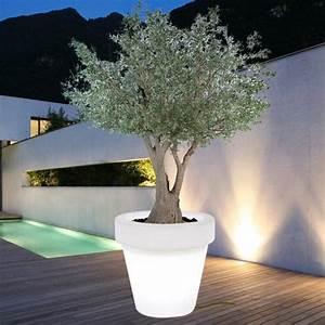 Grand Pot Plante : pot fleur exterieur achat plante pas cher maison ~ Premium-room.com Idées de Décoration
