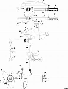 Marine Parts Plus Trolling Motors Serial Motorguide Fresh