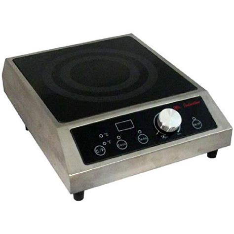 portable induction burner price rangereviews