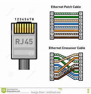 9 Most Rj45 Wiring Diagram Crossover Straight And