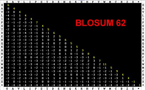 slide in text algorithms fall 2005 l5 edit blosum
