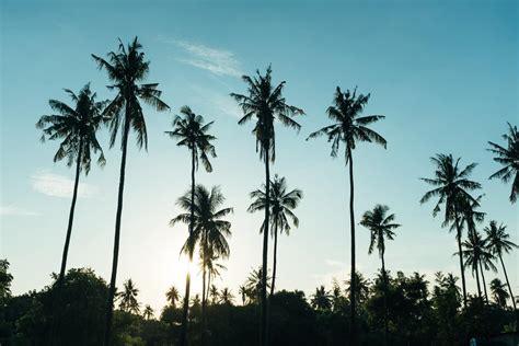 Tūrisma aģentūra MKBC jaunumi | ceļojumi, pēdējā brīža ...