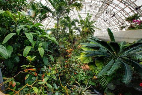 myriad botanical gardens bridge myriad botanical gardens
