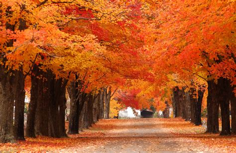 fall color the roads less traveled not as well known scenic drives