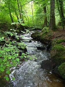 Un Saut D Eau : cours d 39 eau au saut de juillac photo de c 39 est beau la ~ Dailycaller-alerts.com Idées de Décoration
