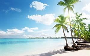 Beach palms sand vacation wallpaper