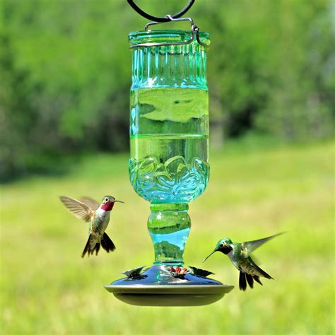 pets hummingbird feeders pet 8120 2 green antique bottle