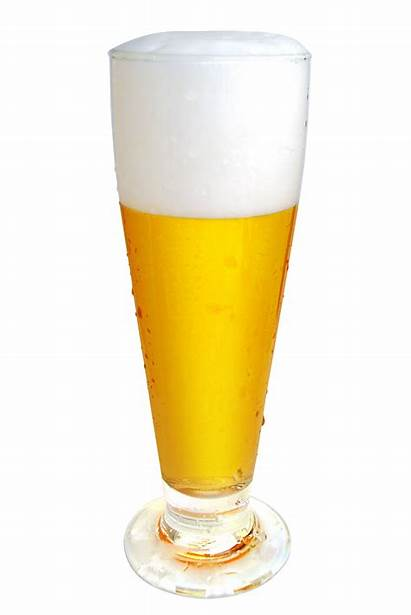 Beer Glass Clip Clipart Cliparts Brewing Geg