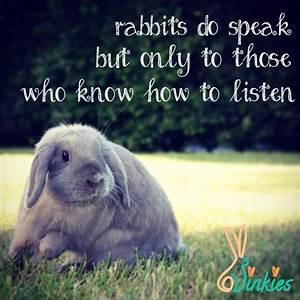 Rabbits do spea... Konijnen Quotes