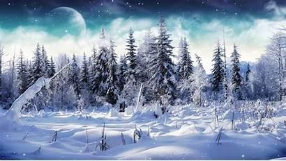Winter Cold Animated Snow Screensavers Scenes Scene